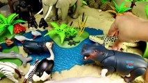 Safari Zoo Wild Animals Toys Schleich Toys Collection Learn Animal Names For Kids