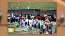 Bobby Cox Ranch Quarter Horses