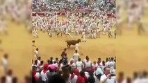 Front Flip Over a Bull