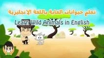 Animaux Anglais pour dans enfants sauvage Les animaux pour les animaux de la jungle enfants en anglais pour