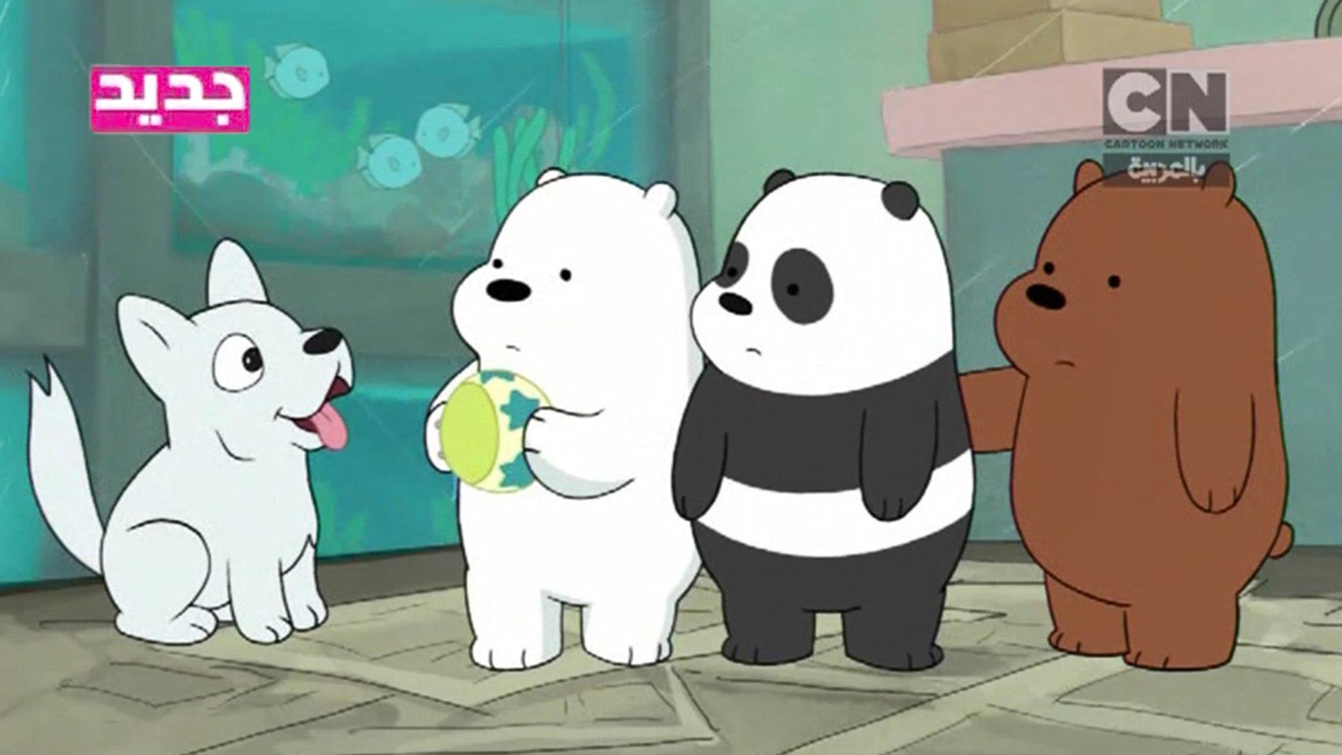 الدببة الثلاثة متجر الحيوانات الأليفة كرتون نتوورك بالعربية