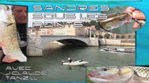 Pêche de A à Z - Sandres sous les ponts (Carnassiers)