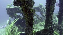 Scuba Diving Encounters: Wreck Diving The Rhone In The British Virgin Islands