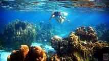 Playas el Delaware por Méjico de parte superior 10 playas méxico 10