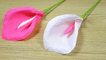 How To Make Crepe Paper Flowers At Home Diy Blue Poppy Flower