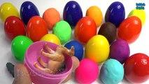 Et animaux les couleurs et et des œufs Apprendre de nombreux nom jouer avec Doh surprise | learn surprise