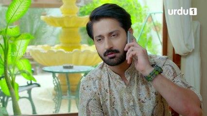 Amanat Last Episode 20 Urdu 1