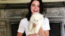 Kendall Jenner Meets the World's Cutest Kitten _ Vogue-h4SU5MOanu8