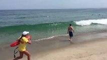 Des touristes échappent à une attaque de requin