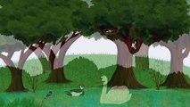 Video para el desarrollo de las aves aves de dibujos animados imagen enseñanza nombres de aves de aves de canto Dete