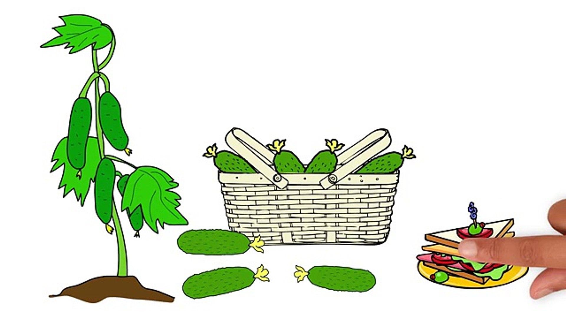 Мультик про овощи и фрукты. Развивающие мультики для детей до 4 х лет. СБОРНИК 1.
