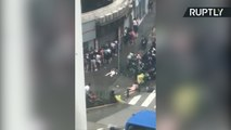 People and Trees Flung Across the Streets as Typhoon Hato Smashes into Macao