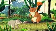 Dessins animés le développement de chouettes mes animaux de compagnie hamsters