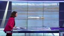 Une petite fille lance un message à la mer en Floride, il arrive dans la Manche 2 ans plus tard
