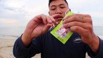 Beach fishing: Simple Fishing Rig catches BIG fish!