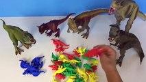 Bébés enfants dinosaure pour fossile amis enfants Apprendre des noms le le le le la jouet Entrainer thomas mort dino