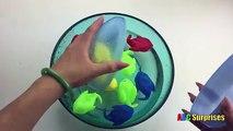 Chocolat les couleurs Oeuf poisson Apprendre ouverture manchot épeler à Il jouet Abc surprend surprise
