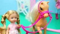 Et docteur gelé cheval poney vétérinaire avec Barbie anna felicia chelsea barbie bar