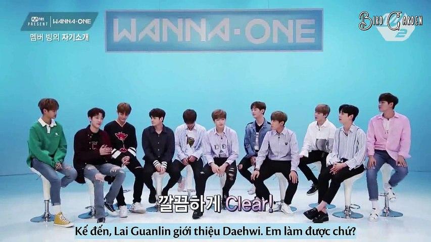 [VIETSUB] MNET PRESENT - Wanna One