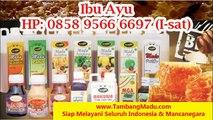 Telp 0858 9566 6697 (AXIS) Jual Madu Curah Bandung
