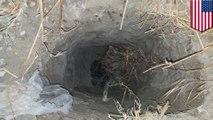 Border Patrol agents detain 30 at cross-border tunnel in San Diego