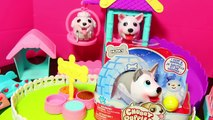 CHUBBY PUPPIES DOG RACE Giant Fun Toys Chubby Puppies Walking Dog Park