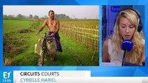 Jadav Payeng, un Indien qui a planté une forêt à mains nues