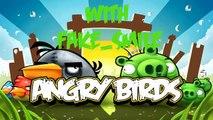 En colère des oiseaux saison saisons 1