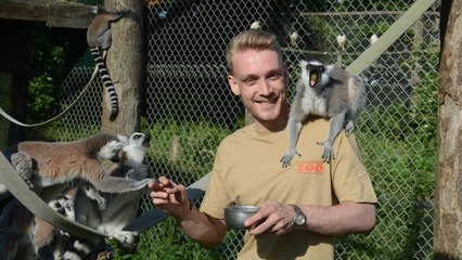 I'm 24 and I Own a Zoo