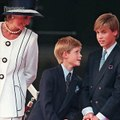 Mort de Diana, les princes William et Harry témoignent