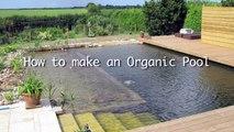 Un et un à un un à construire bricolage Comment dans Bio piscine à Il Piscine: naturelle 3 minutes