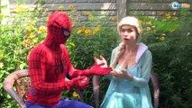 Frozen Elsa Bee Stings Spiderman W Spidergirl Venom