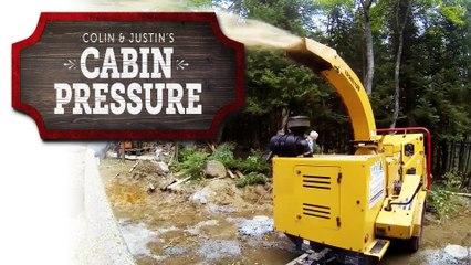 The Arborists - Cabin Pressure