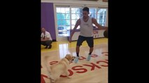 Klay Thompson Plays 1v1 Against a DOG