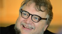 Del Toro Teases New Project As Political Fairy-tale