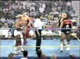 Hollywood Blondes vs The Horsemen for Tag Titles  (1993.08.18 WCW)