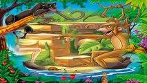El Delaware por un tenido el el paraca el el libro selva   cuentos infantiles español   cuentos niños   cuentos