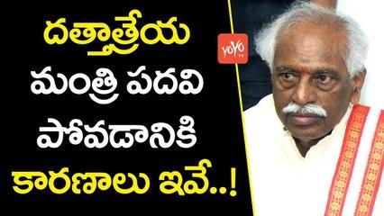 దత్తాత్రేయ మంత్రి పదవి పోవడానికి కారణాలు | Dattatreya Resigned From His Central Ministry | YOYO TV CHANNEL