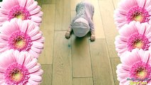 NEW Baby Annabell Learns to walk doll - Baby Doll Crawls, laughs and Cries just like a rea