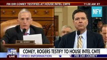 James Comey EXPOSED by Trey Gowdy So Are You Gonna Lie to Our Faces?