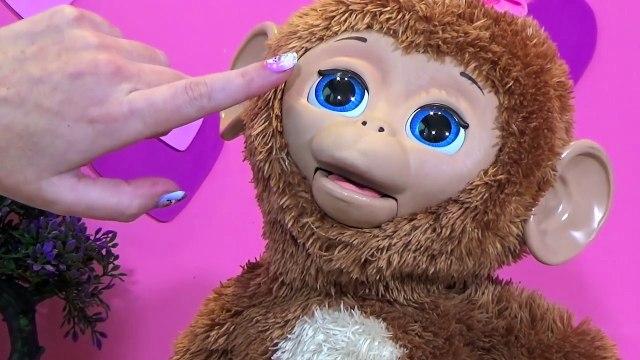 Moni Monita en español - FurReal Friends juguetes - Bebé Mona Anna Banana - Cuddles my Giggly Monkey