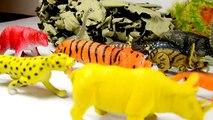 ДИНОЗАВРЫ. Динозавры и Древний Дракон Серия 7 | Мультфильм про динозавров на русском | Игрушки ТВ