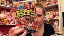 JAPAN CRATE NOVEMBER - JAPANESE CANDY SUBSCRIPTION BOX