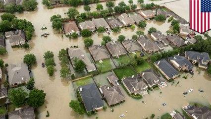 น้ำท่วมจากเฮอร์ริเคนฮาร์วีย์ จะไปไหนต่อหลังพายุสงบ