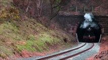 Steam Train Hauling Freight through a Tunnel on a Steam Railway