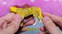 Réticulé girafe girafes animaux pour enfants enfants vidéos Jardin denfants préscolaire Apprendre