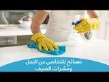 طرق فعالة للتخلص من النمل وحشرات الصيف| Natural ways to get rid of insects in your home