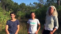 Protégeons la biodiversité en Ria d'Etel ! Chantier nature du 30 septembre au 1er octobre 2017