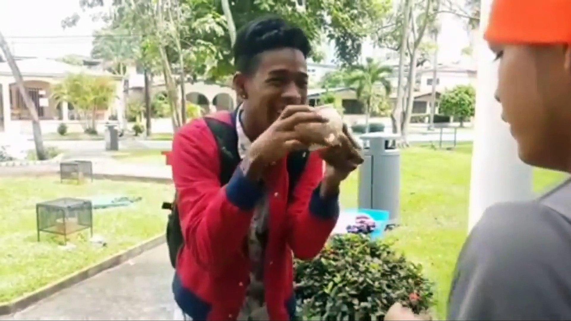NUEVO: HUMOR PANAMEÑO HUMOR DOMINICANO NIVEL DIOS SUPREMO VINES RECOPILACION