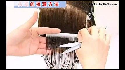 Video Học Cắt Tóc cơ bản, Basic Haircut One length (Phần 1)